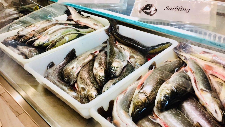 Fisch-Hofladen